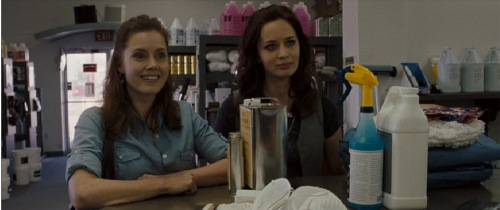 Sunshine Cleaning, 2009, Amy Adams, Emily Blunt